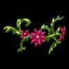 https://www.eldarya.ru/static/img/item/player/icon/c2c65cd79c9594ff2490b1cc56f1158a.png
