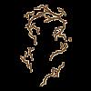 https://www.eldarya.ru/static/img/item/player/icon/d38250e47f9fa829be77082c4b7c903a.png